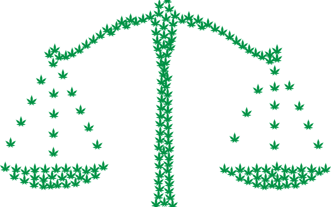 Cannabis – plants and derived products: Is there a valuable IP protection possible?